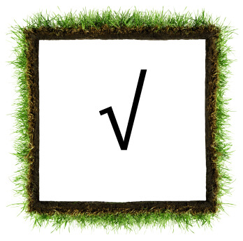 essay square root 2 Disclaimer: all works delivered by the custom writing such as: essays, research papers, thesis papers, dissertations, term papers should be used as samples aimed for assistance purposes only.