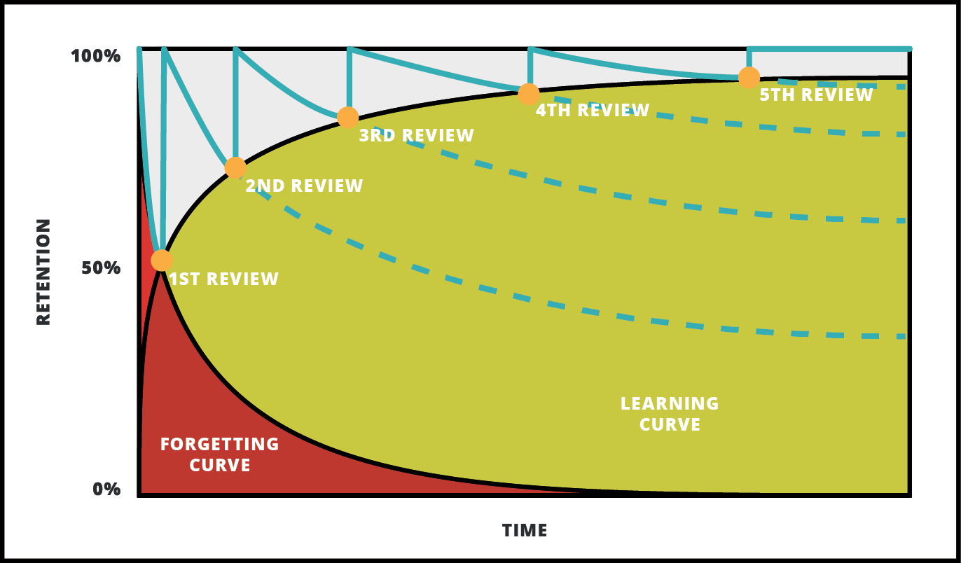 Manhattan Prep GRE Blog - Hack the GRE Vocab - Used Spaced Repetition to Get Maximum Results with Minimum Time Investment - Forgetting Curve Vs. Learning Curve - by Ceilidh Erickson